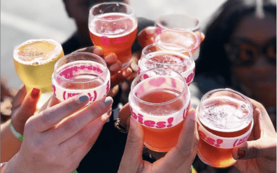 Charity Spotlight: Brewbies Fest
